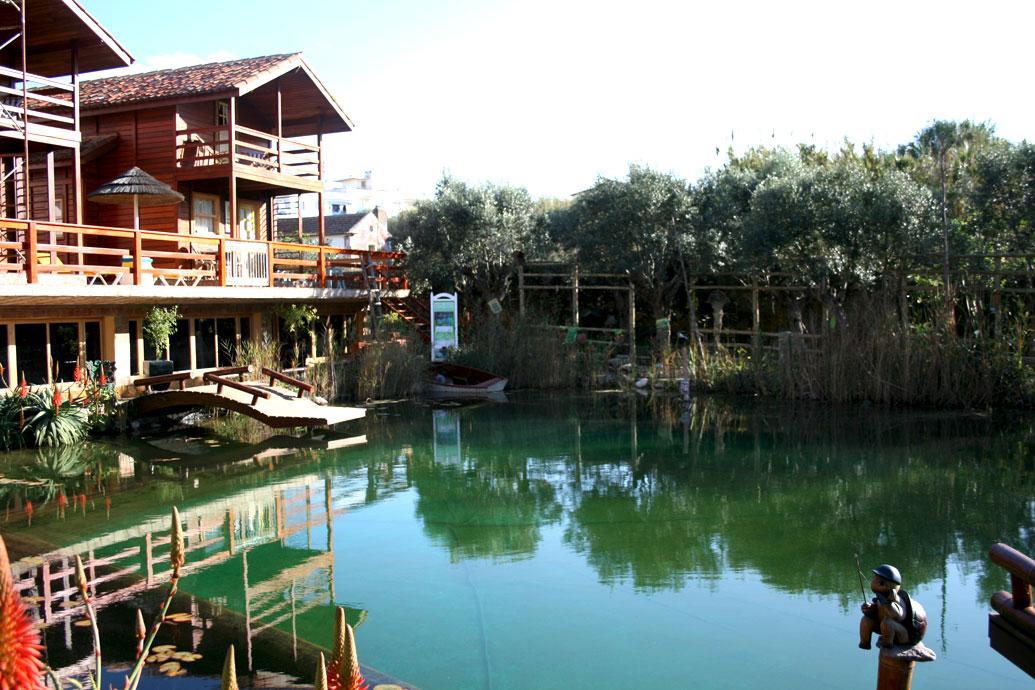 ecologic pool